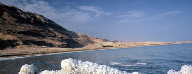 Ormus Minerals Dead Sea Salt resource